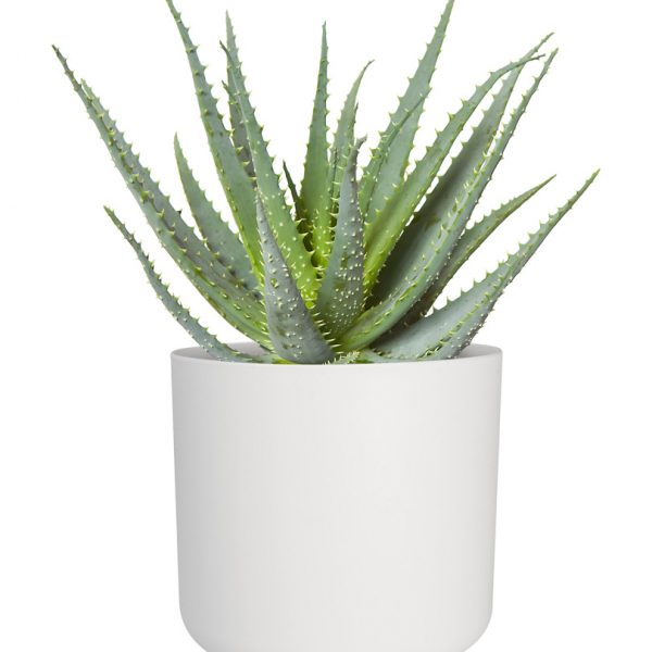 white-indoor-plant-pot-0